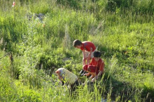 Wasser - Lebenselixier und Biotope im Karst