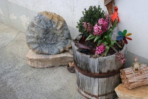 Steinreicher Jura: kreativ, informativ, einmalig